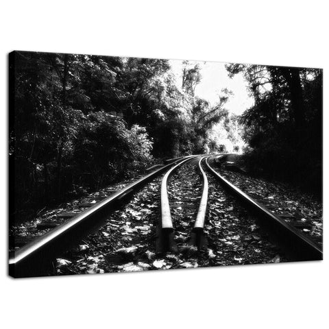 Lead Me Into The Light in Black and White Rural Landscape Fine Art Canvas Wall Art Prints