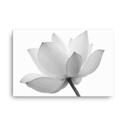 Lotus Flower Black and White Effect Floral Nature Photo Classic Canvas Wall Decor Print
