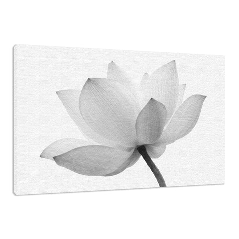 Lotus Flower Black and White Effect Floral Nature Photo Fine Art Canvas Wall Art Print