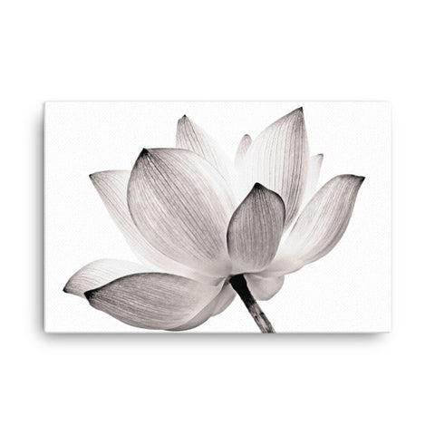 Lotus Flower Tinted Effect Floral Nature Photo Canvas Wall Decorating Art Print