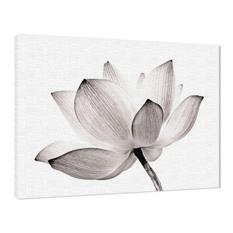 Lotus Flower Tinted Effect Floral Nature Photo Fine Art Canvas Wall Art Print