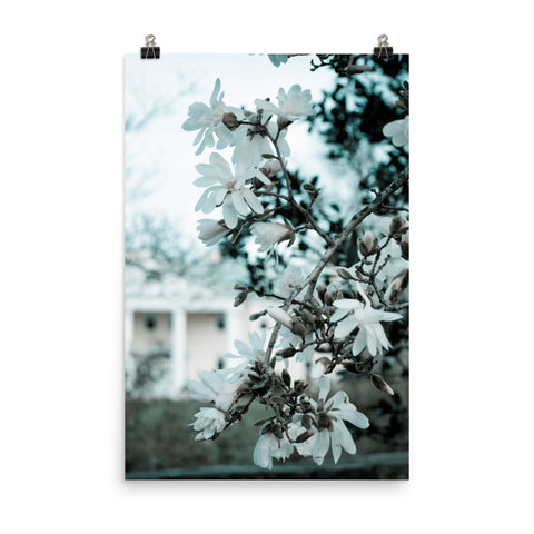Mansion Blooms Floral Landscape Photo Loose Wall Art Print