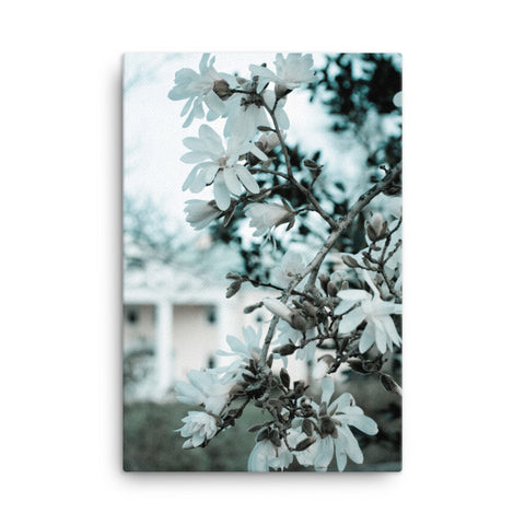 Mansion Blooms Floral Landscape Canvas Wall Art Prints