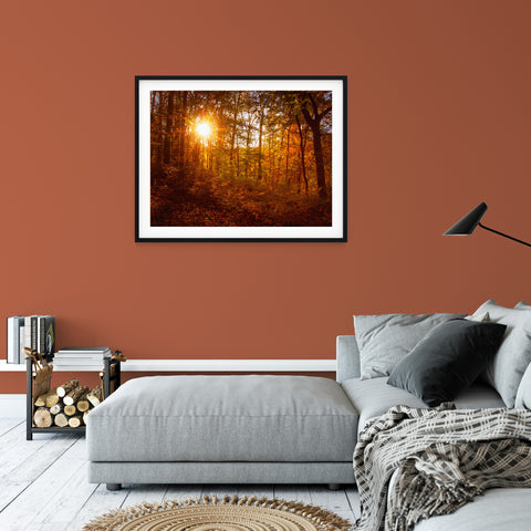 Nature Landscape Photo - Autumn Sunset in the Trees - Fine Art Canvas Print - Home Decor Unframed Wall Art Prints for your living room, bedrooms, dining rooms family rooms and more.