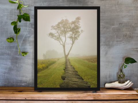 Nature Landscape Photograph Calming Morning - Fine Art Canvas Prints - Home Decor Unframed Wall Art Prints for your living room, bedrooms, dining rooms family rooms and more.