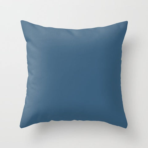 PPG Glidden 2020 Color of the Year Chinese Porcelain PPG1160-6 Solid Color Throw Pillow