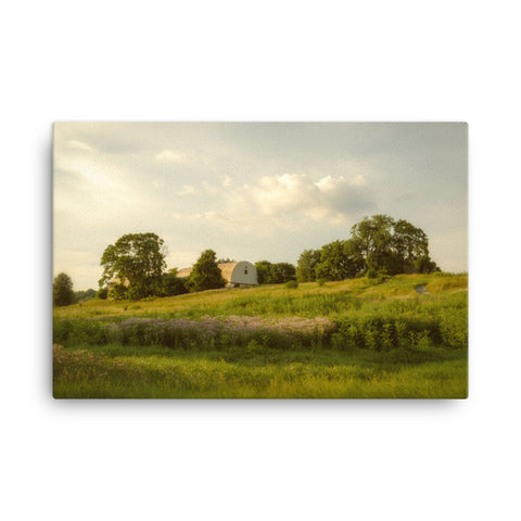 Remnant of Better Days Rural Landscape Canvas Wall Art Prints