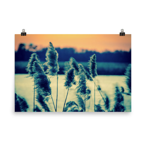 Sunset on the Marsh 2 Landscape Photo Loose Wall Art Prints