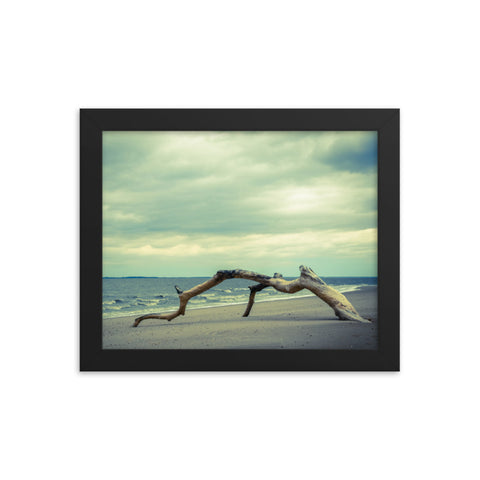 The Cove Coastal Landscape Framed Photo Paper Wall Art Prints