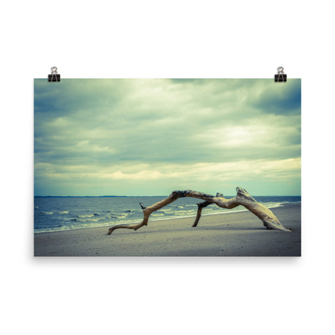 The Cove Landscape Photo Loose Wall Art Prints