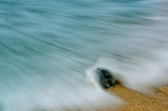 Whelk Seashell and Misty Wave Nature / Coastal Photo Fine Art & Unframed Wall Art Prints