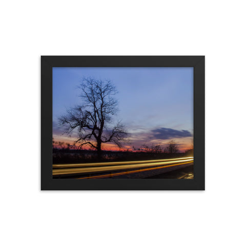 Wicked Tree Rural Landscape Framed Photo Paper Wall Art Prints