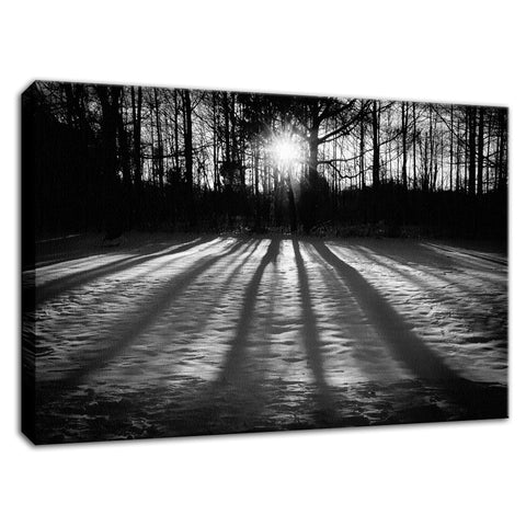 Winter Shadows from the Trees Black & White Fine Art Canvas Wall Art Prints