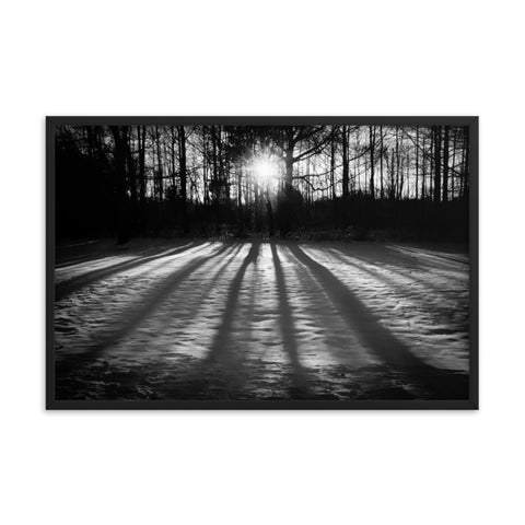 Winter Shadows from the Trees Black & White Framed Photo Paper Wall Art Prints