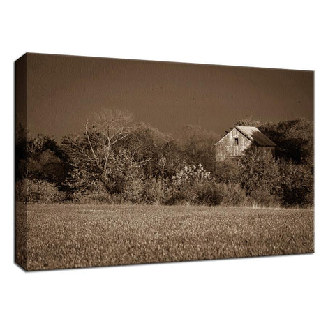 Abandoned Barn In The Trees Sepia Landscape Fine Art Canvas Wall Art Prints