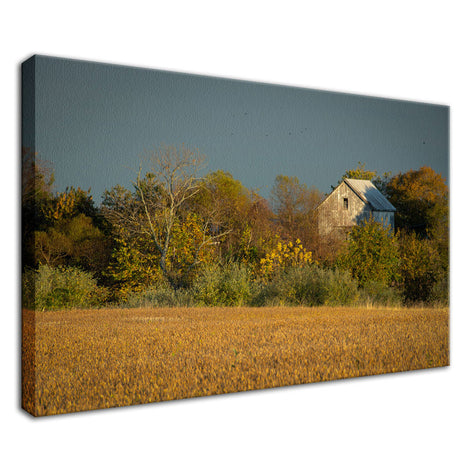 Abandoned Barn In The Trees Rural Landscape Photo Fine Art Canvas Wall Art Prints