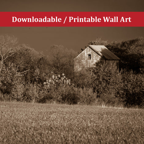 Abandoned Barn In The Trees Monochromatic Landscape Photo DIY Wall Decor Instant Download Print - Printable