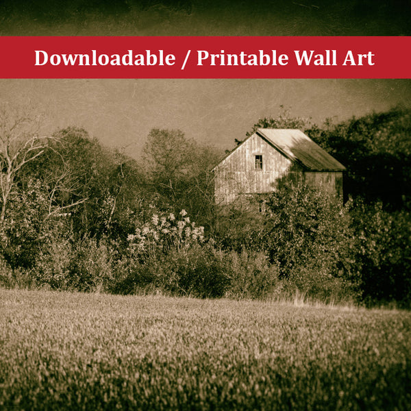 Abandoned Barn In The Trees Vintage Rural Landscape Scene Photo DIY Wall Decor Instant Download Print - Printable