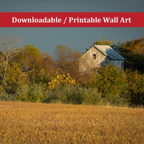 Abandoned Barn In The Trees Landscape Photo DIY Wall Decor Instant Download Print - Printable