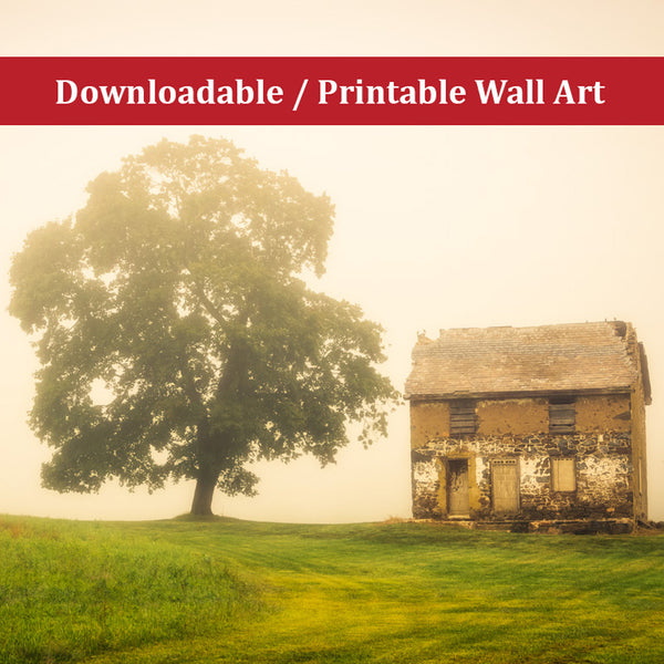 Abandoned House on Adams Dam Rd Rural Landscape Scene Photo DIY Wall Decor Instant Download Print - Printable