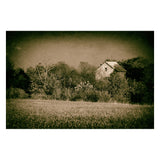 Abandoned Barn In The Trees Vintage Black & White Rural Landscape Fine Art Canvas & Wall Art Prints Unframed