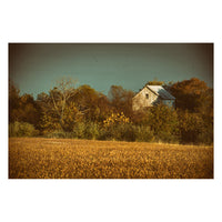 Abandoned Barn In The Trees - Colorized Fine Art Canvas & Unframed Wall Art Prints - PIPAFINEART