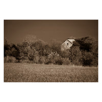 Abandoned Barn In The Trees Sepia Landscape Fine Art Canvas Wall Art Prints  - PIPAFINEART