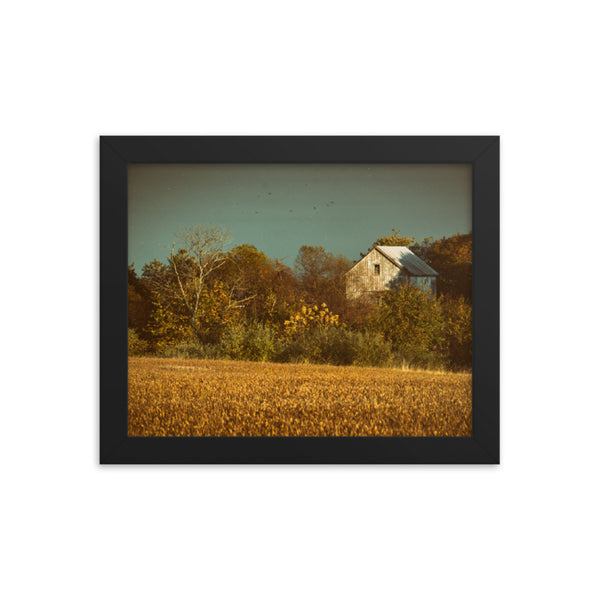 Abandoned Barn In The Trees Colorized Framed Photo Paper Wall Art Prints
