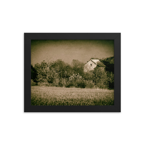 Abandoned Barn In The Trees Vintage Rural Landscape Scene Framed Photo Paper Wall Art Prints