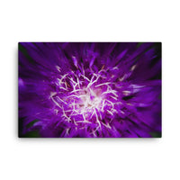Abstract Flower Floral Nature Canvas Wall Art Prints  - PIPAFINEART