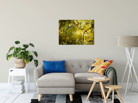 Botanical Nature Photograph Aged Golden Leaves - Fine Art Canvas - Home Decor Unframed Wall Art Prints