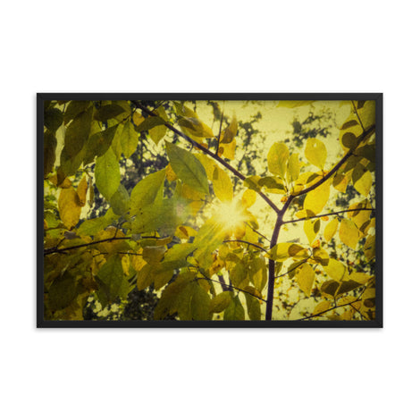 Aged Golden Leaves Botanical Nature Photo Framed Wall Art Print