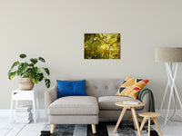 "Aged Golden Leaves Botanical / Nature Photo Fine Art Canvas Wall Art Prints 20"" x 30"" - PIPAFINEART"
