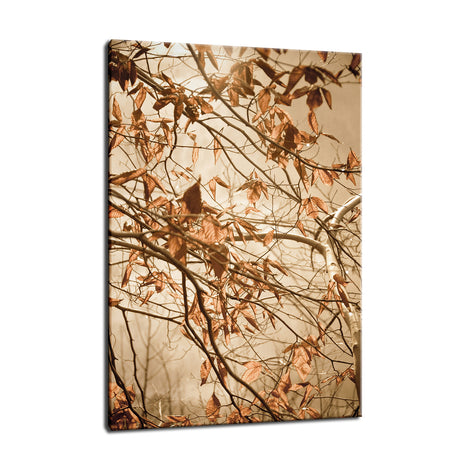 Aged Winter Leaves Botanical / Nature Photo Fine Art Canvas Wall Art Prints