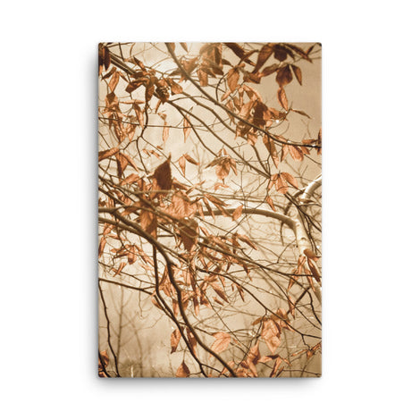 Aged Winter Leaves Botanical Nature Canvas Wall Art Prints