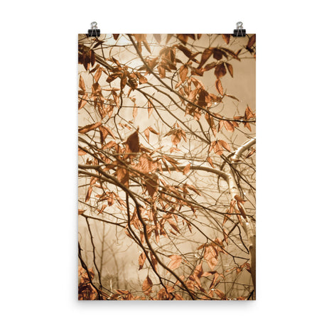 Aged Winter Leaves Botanical Nature Photo Loose Unframed Wall Art Prints