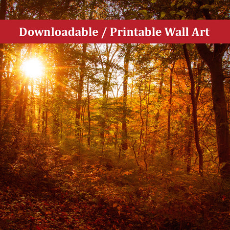 Autumn Sunset Landscape Photo DIY Wall Decor Instant Download Print - Printable