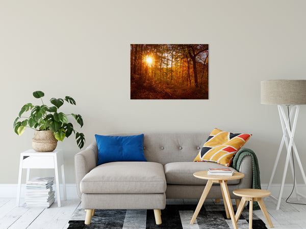 Nature Landscape Photo - Autumn Sunset in the Trees - Fine Art Canvas Print - Home Decor Unframed Wall Art Prints
