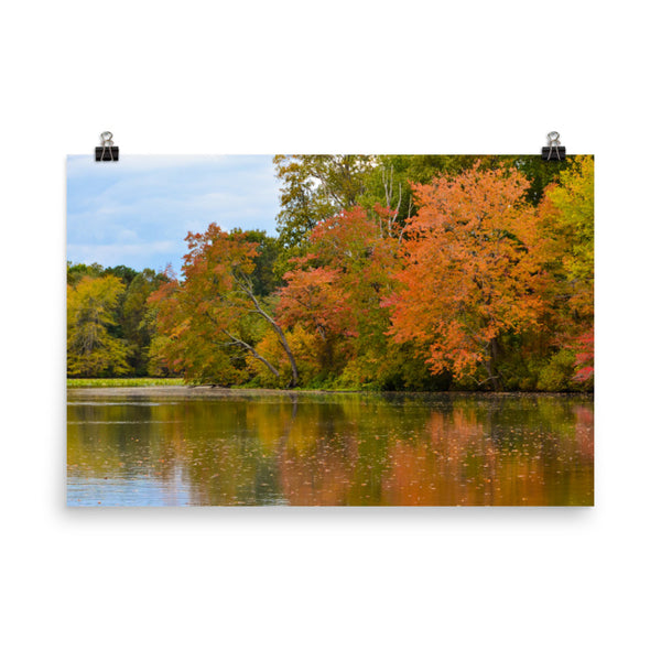 Autumn Tree Line Landscape Photo Loose Wall Art Prints