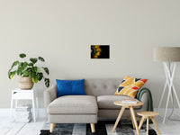 "Backside of Sunflower Nature / Floral Photo Fine Art Canvas Wall Art Prints 11"" x 14"" / Fine Art Canvas - PIPAFINEART"