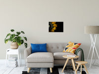 "Backside of Sunflower Nature / Floral Photo Fine Art Canvas Wall Art Prints 16"" x 20"" / Fine Art Canvas - PIPAFINEART"