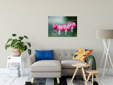 "Be Still My Bleeding Heart Nature / Floral Photo Fine Art Canvas Wall Art Prints 24"" x 36"" / Fine Art Canvas - PIPAFINEART"