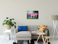 "Be Still My Bleeding Heart Nature / Floral Photo Fine Art Canvas Wall Art Prints 20"" x 30"" / Fine Art Canvas - PIPAFINEART"