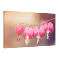 Be Still My Bleeding Heart Warm Glow Floral / Nature Fine Art Canvas Wall Art Prints  - PIPAFINEART