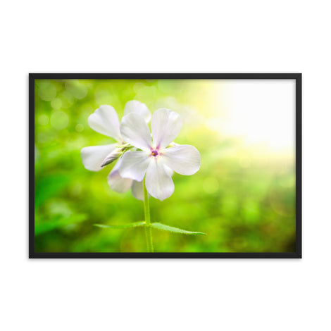 Beauty of the Forest Floor Floral Nature Photo Framed Wall Art Print