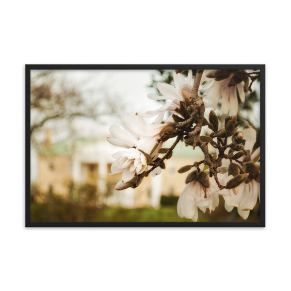 Bellevue Mansion Floral Nature Photo Framed Wall Art Print  - PIPAFINEART
