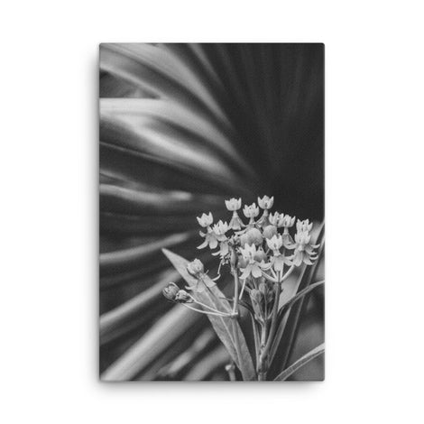 Bloodflowers and Palm Black and White Floral Nature Canvas Wall Art Prints