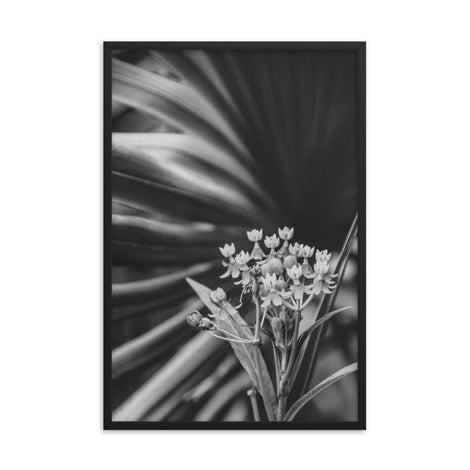 Bloodflowers and Palm Black and White Framed Wall Art Print