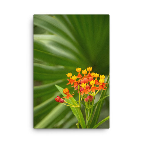 Bloodflowers and Palm Color Floral Nature Canvas Wall Art Prints