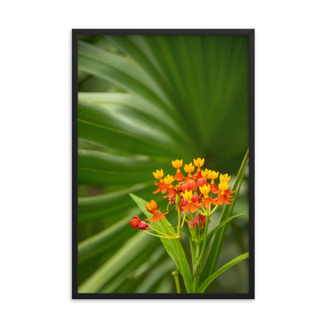 Bloodflowers and Palm Color Floral Nature Photo Framed Wall Art Print